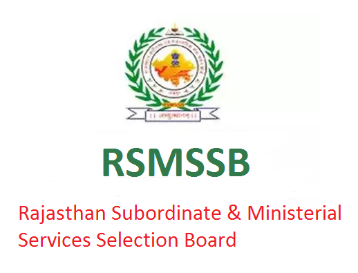 RSMSSB Tax Assistant Results